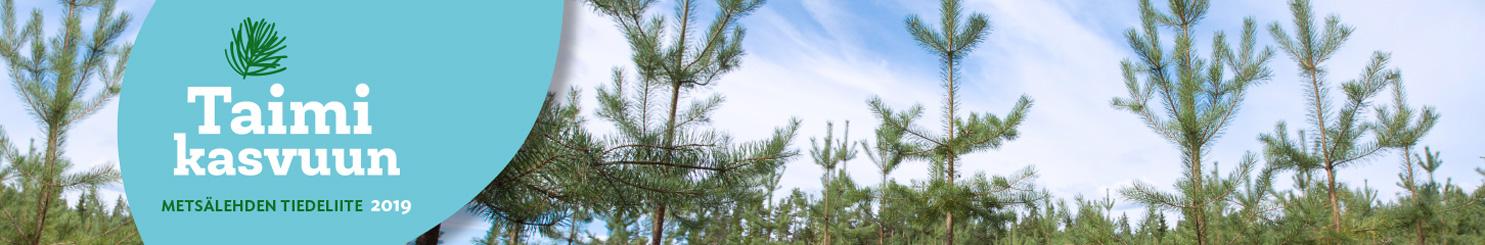 Metsälehden tiedeliite 2019